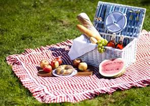 The Picnic Top 5 Reasons To Attend The Broadway In Chicago Summer