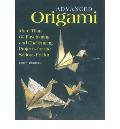 Advanced Origami Book - advanced origami didier boursin 9781552095270