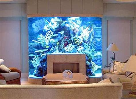 built in aquarium design unusual built in aquariums adding beautiful green ideas to