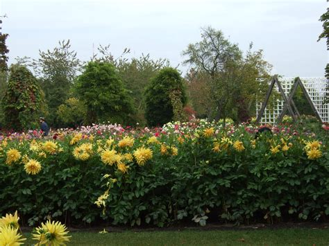 Britzer Garten Festplatz by Britzer Garten
