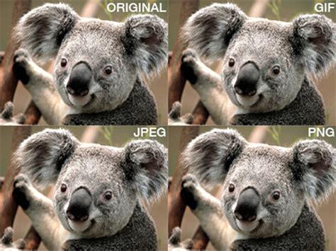 imagenes jpg que son jpeg gif y png cuando utilizar cada formato de imagen