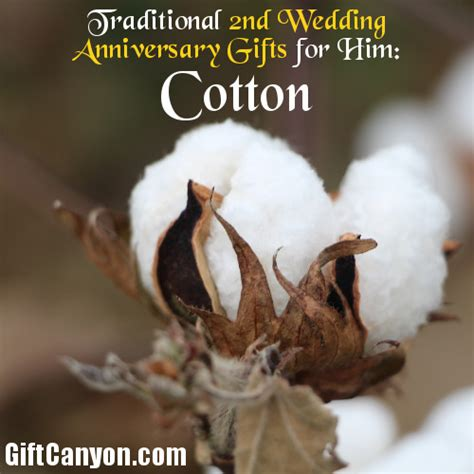 Wedding Anniversary Gifts For Him by Traditional 2nd Wedding Anniversary Gifts For Him Cotton