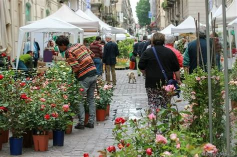 mercato dei fiori torino flor torino 2017 vi aspettiamo il 26 28 maggio mercato