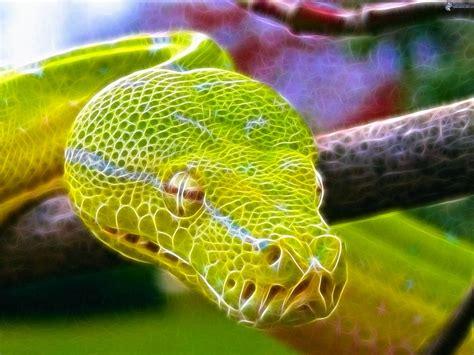 imagenes de serpientes verdes serpiente verde