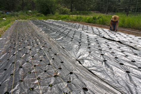 Landscape Fabric For Gravel Landscape Fabric 171 Soil Farm