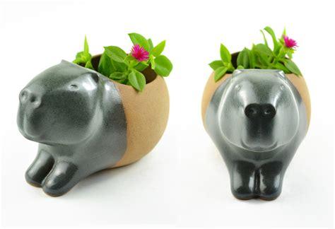 animal planter handmade ceramic animal planters by cumbuca chic colossal
