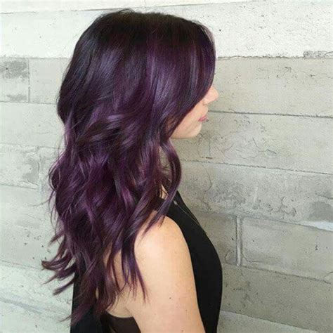 eggplant color hair black eggplant hair color www pixshark images