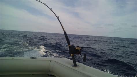 charter boat fishing deerfield beach fl bolo sportsfishing charters south florida finds