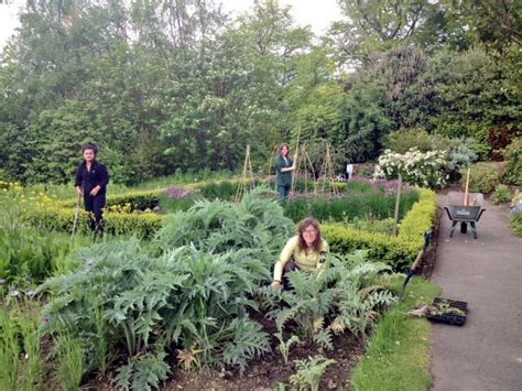 Botanical Gardens Volunteer Glasgow Botanic Gardens 187 Volunteers Required