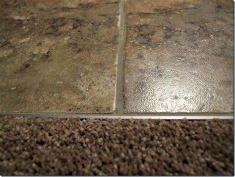 Carpet To Vinyl Transition Strip   Carpet Vidalondon