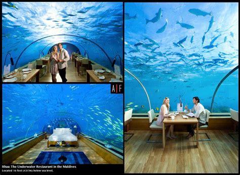 maldives ringali island conrad underwater restaurant part conrad maldives rangali island clusterfucks