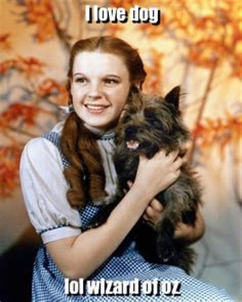 Dorothy Meme - 1000 images about wizard of oz on pinterest the wizard