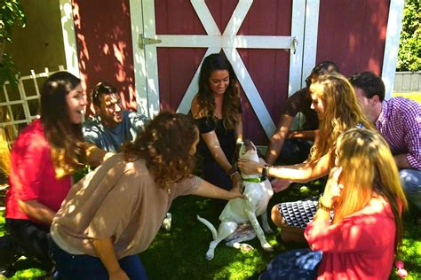 lucky puppy rescue synlawn and lucky come to the rescue synlawn