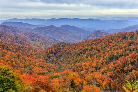 smoky mountain fall colors when to see peak pigeon forge fall foliage