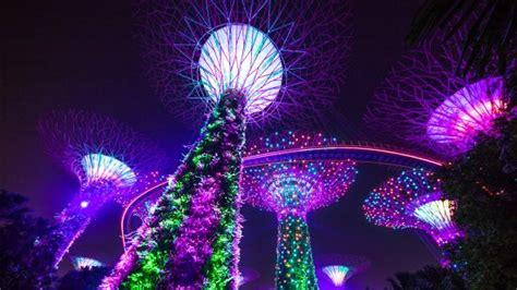 light show lights garden rhapsody