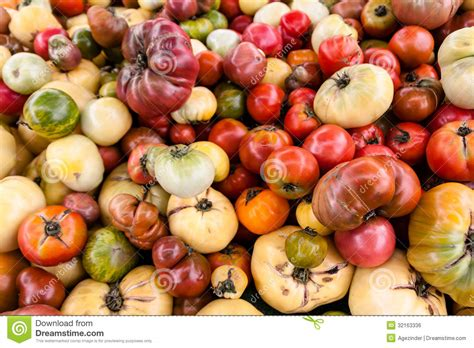 Tomat Multi Color heirloom tomatoes royalty free stock image image 32163336