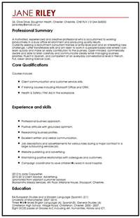 Resume Transferable Skills Exles by Cv Exle With Transferable Skills Myperfectcv