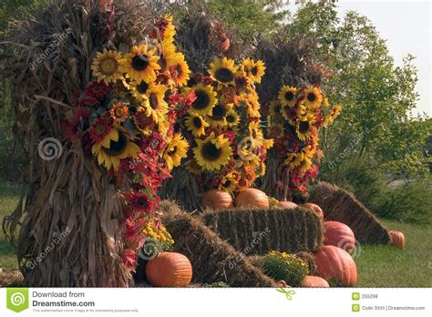 fall decoration images fall decorations stock photo image of fall decorations