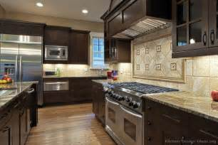 Kitchen Ideas Dark Cabinets Gourmet Kitchen Design Ideas