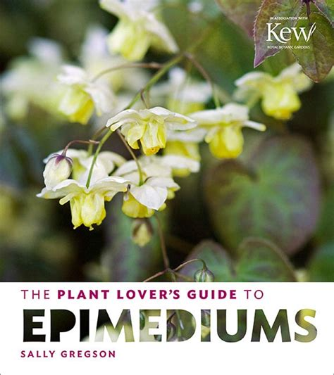 plant lovers the plant lover s guide to epimediums gardenbunch
