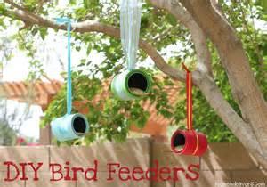 Easy Bird Feeders The Simple Solution Diy Bird Feeders