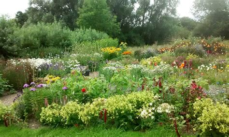Uk Garden Flowers Traditional Cottage Garden Florist King S Norfolk