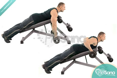 dumbbell bench row incline bench row