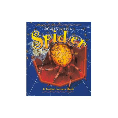 the of the spider books the cycle of a spider book spider cycle book