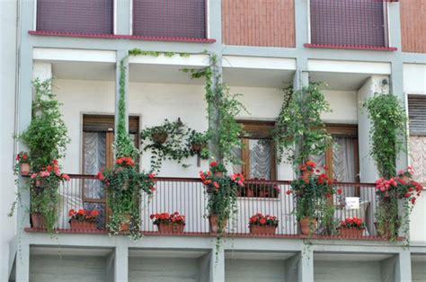 idee balconi fioriti balconi fioriti ecco i vincitori cultura spettacoli