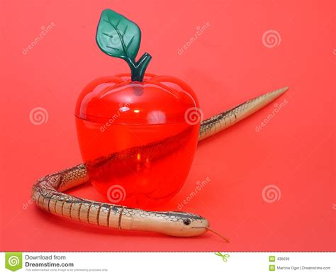 Apple And Snake Royalty Free Stock Images   Image: 436699