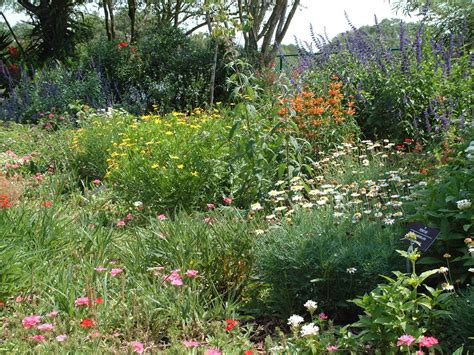 backyard butterfly garden two men and a little farm finished interior where are the
