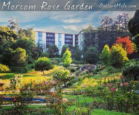 Garden Oakland by Secret Morcom Garden Grand Ave 2016
