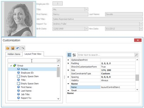 devexpress layout control video winforms layout control enhancements coming soon in v15 2