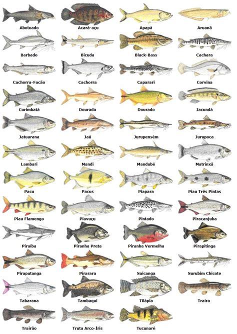 tabla de mareas 2016 de suances cantabria para la pesca tabla de mareas 2016 de suances cantabria para la pesca