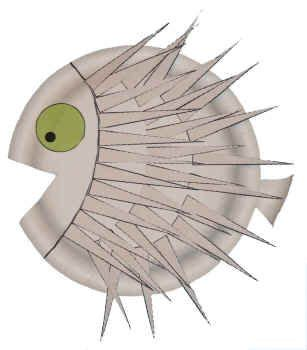 puffer fish craft paper plate puffer fish the children at the preschool
