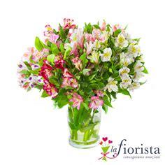 fiori a trieste fiori a trieste vendita fiori consegna fiori