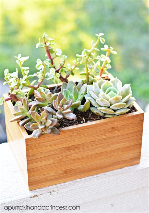Succulent Planter Box Ikea Hack A Pumpkin And A Princess Succulent Planter Box