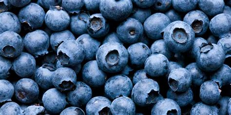 what color are blueberries the health benefits of blueberries food