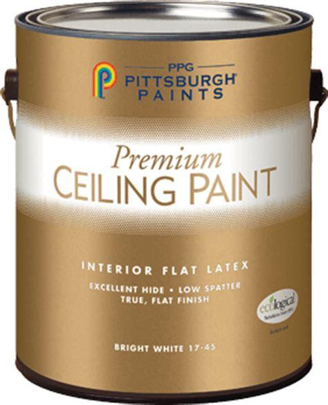 premium ceiling white interior flat