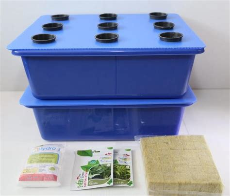 Starter Kit Hidroponik Murah jual beli starter kit hidroponik tanaman hidroponik