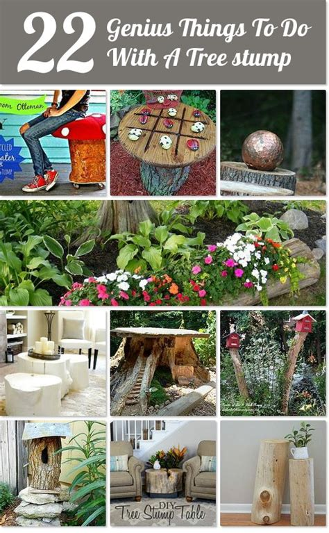 what to do with plant stump as christmas decoration outdoors hometalk 22 genius things to do with a tree stump