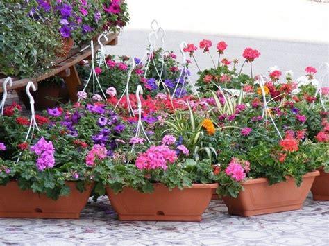 vasi fiori design vasi per fiori vasi per piante tipologie vasi