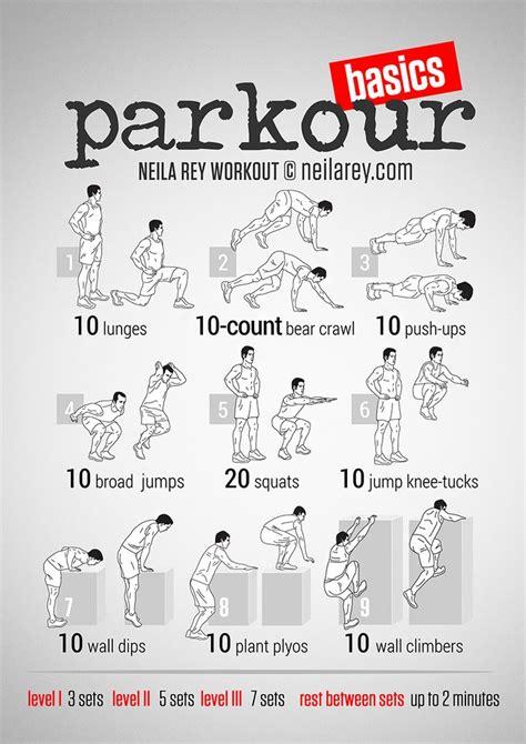 back workout neila pesquisa exercises