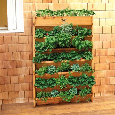 Creative Strawberry Planters by Creative Strawberry Planters Hgtv