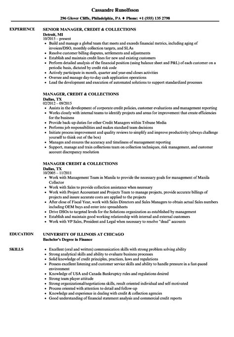 resume for an executive account manager susan ireland resumes