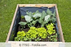 Aufbau Eines Hochbeetes Im Garten 2372 by Hochbeet Richtig Schichten Bef 252 Llen Und Bepflanzen