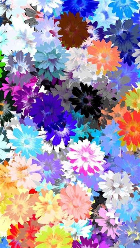 colorful wallpaper pinterest pinterest the world s catalog of ideas