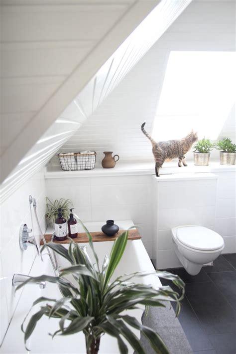 was kostet badrenovierung badezimmer selbst renovieren vorher nachher design dots