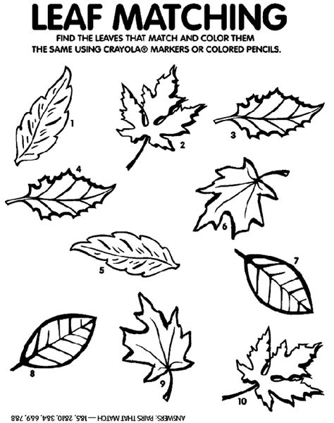 coloring pages of a leaf preschool leaf matching game coloring page crayola com