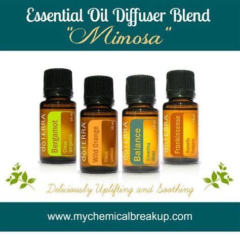 Diffuer Recipes For Detox by 62 Best Doterra Diffuser Recipes Images On